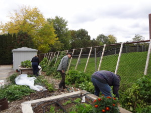 Participants Working in the Garden